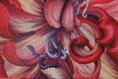 Tripple Tulip 1