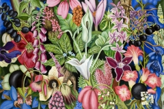 Häxväxter