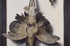Aves-humanus